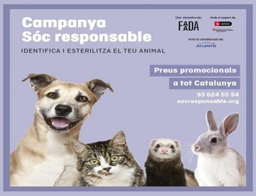 Campanya d'esterilització d'animals de companyia a preu reduït